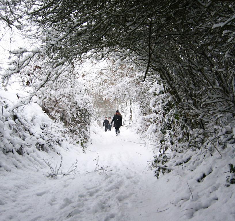 Marche hivernale au pays des druides, Moulin de Grouches, Pranahvital