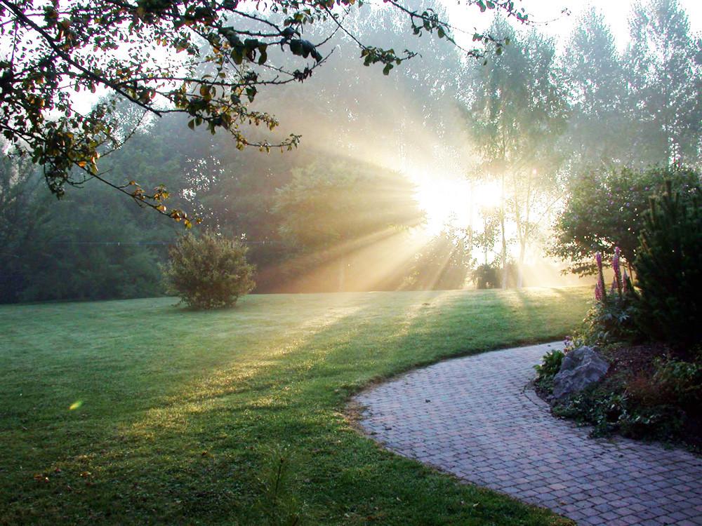 Jeûne, cure, détox, santé, calme, repos, hygiène de vie, naturopathie, bien être, chamanisme