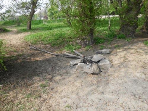 Herausgerissene Pflanzpfähle, die für ein Feuer am Elbufer benutzt wurden (Foto vom 12.4.2014)