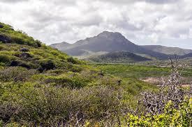 Sehenswürdigkeiten - Christoffelpark Urlaub auf Curacao
