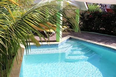 pool-palme-Ferienhaus-CAS-IGUANA-Urlaub-Curacao-Karibik-Villapark-Fontein