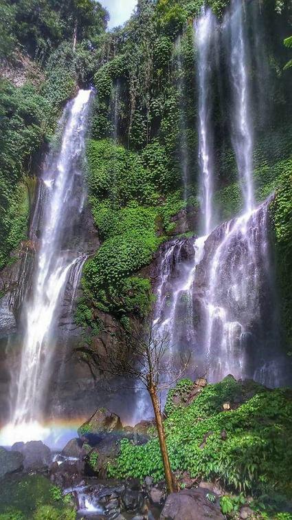 92 Meter Höhe: Die Sekumpul Wasserfälle in Nordbali