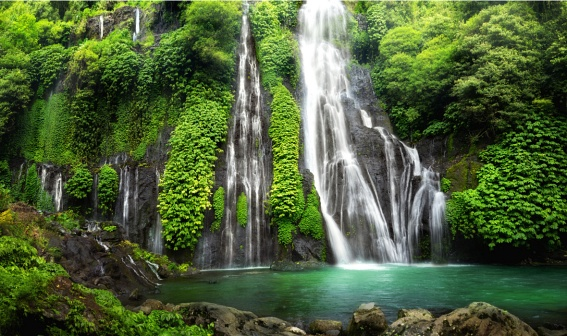 Banyumala Waterfall. Don't miss to swim in its pool!