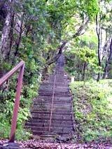 通称ヒャッカギと呼ばれる長い 階段