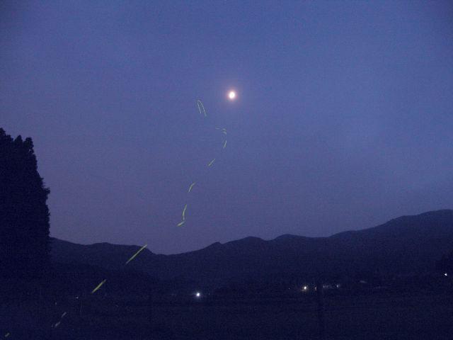 月に向かう1頭のヘイケホタル。(レタッチしてあります。15秒露出) 2006年7月1日撮影