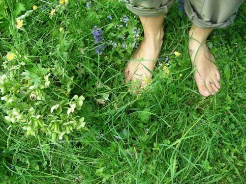 Se fondre dans la nature, se relier au monde subtil du vibrant vivant