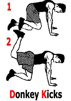 Exercice de musculation pour un fessier bien rebondi