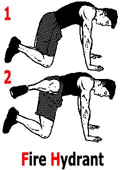 Exercice de musculation des fessiers à genoux