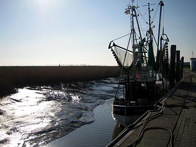 Im Hafen von Spieka