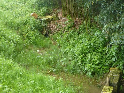 Villars les bois - Font Robert, la source