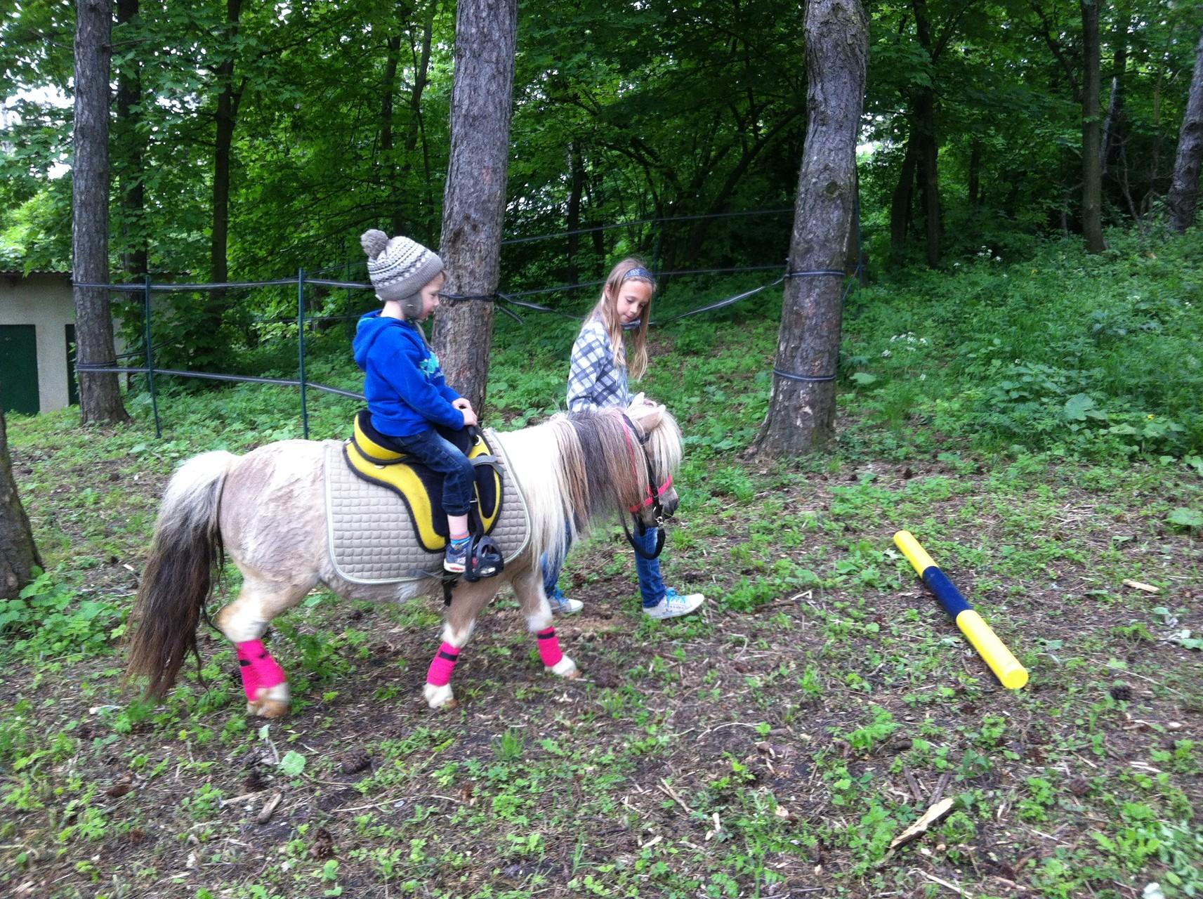 Ponyreiten bei der Eröffnungsfeier der Buschberghütte 2015