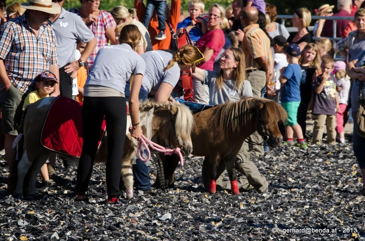 Ponyreiten beim Pferdefest vom Reitverein Wultendorf 2013