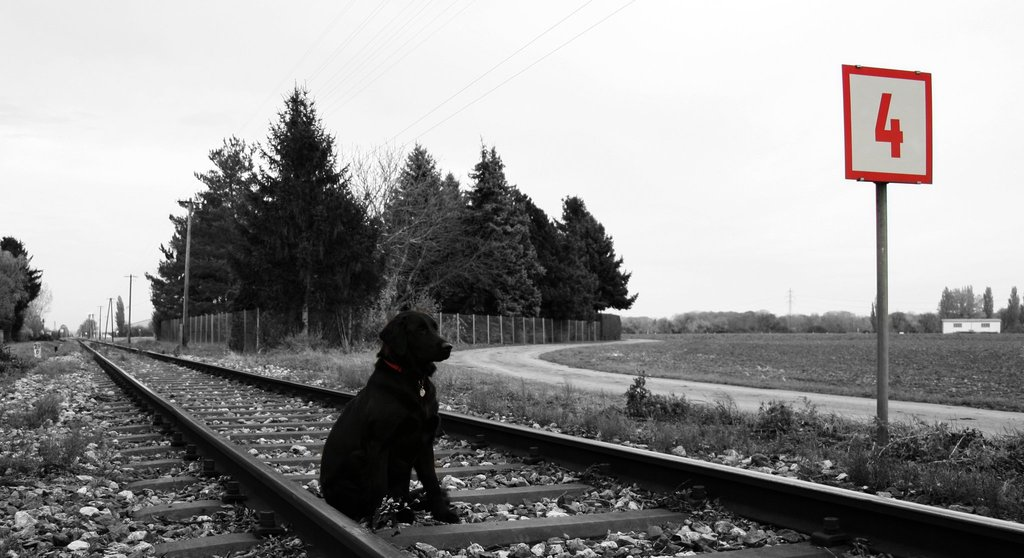 La Speranza Fotografie
