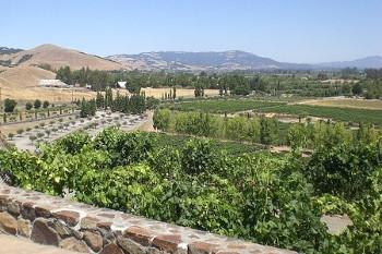 Sonoma County カリフォルニア州ソノマのワイナリー