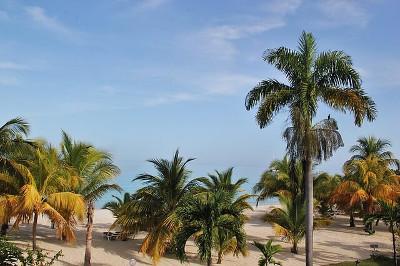 jamaica ジャマイカ
