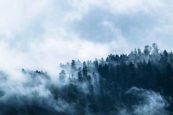 山麓の画像