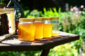 Honey ハチミツ