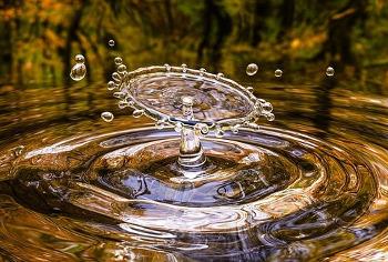 美しい水の画像