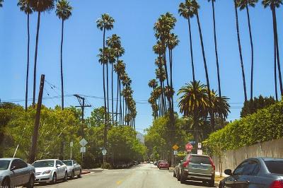 Hollywood ハリウッド