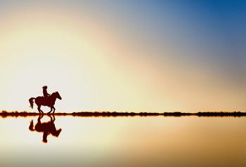 乗馬の画像