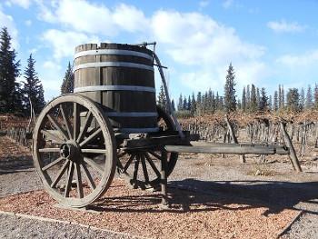 cask ワイン樽