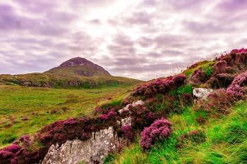 アイルランドの画像