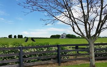 ケンタッキーの農場の画像