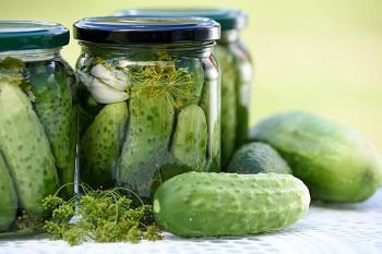 cucumber キュウリ