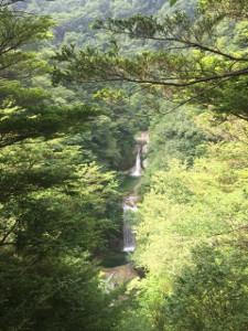 北杜市白州町の尾白川渓谷の画像