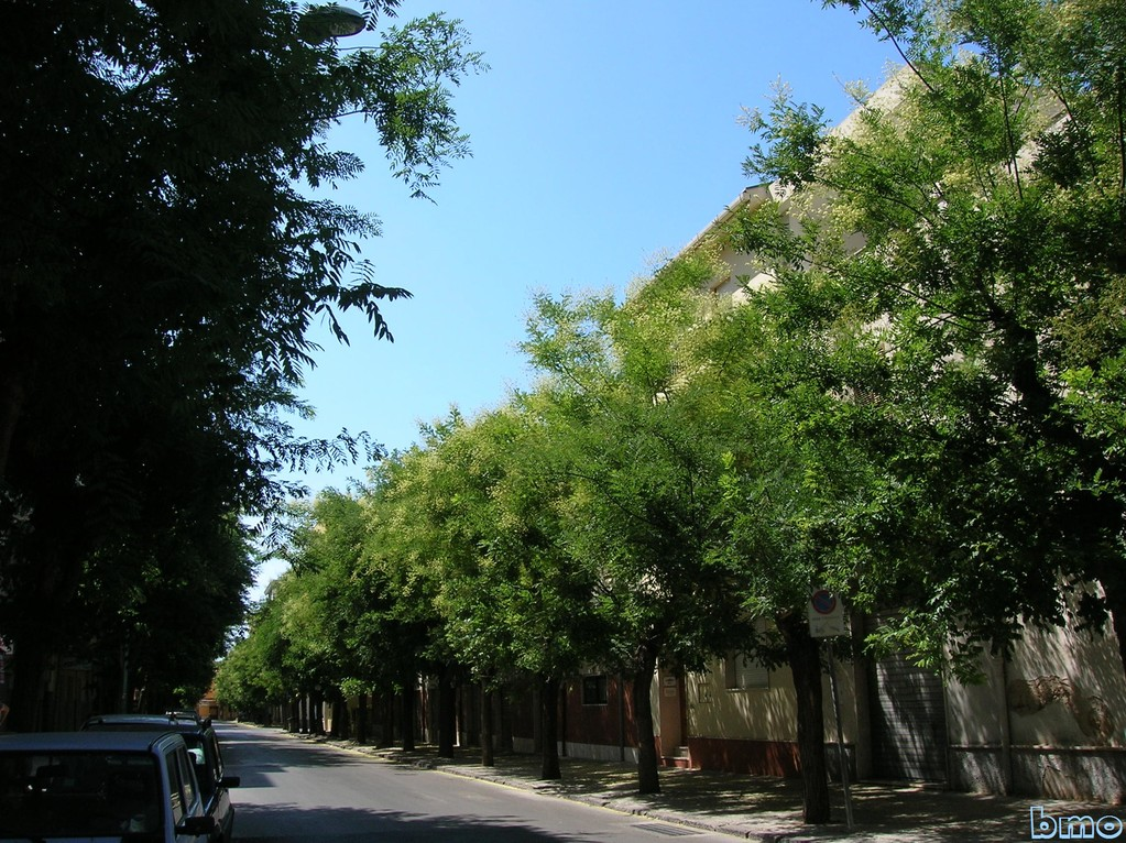 Via Sant'Agostino