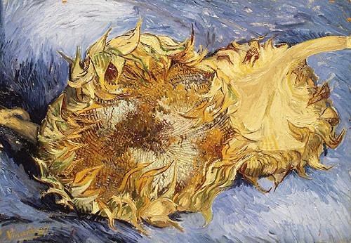 Due girasoli è un dipinto ad olio su tela di cm 43,2 x 61 realizzato nel 1887 dal pittore Vincent Van Gogh. È conservato al Metropolitan Museum of Art di New York.