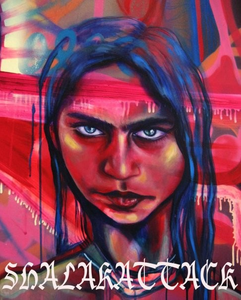 """Detail from """"Alma"""" by Shalak. Spray paint and acrylic on canvas (6ft x 2.5ft).  2009   (Sold  Private Collector - Canada)"""