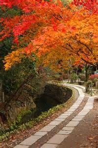 秋 紅葉に染まる哲学の道