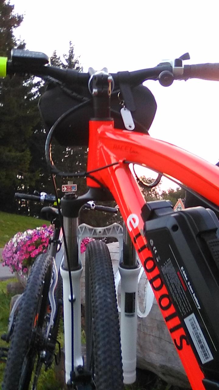 Punto Service Etropolis e-bike