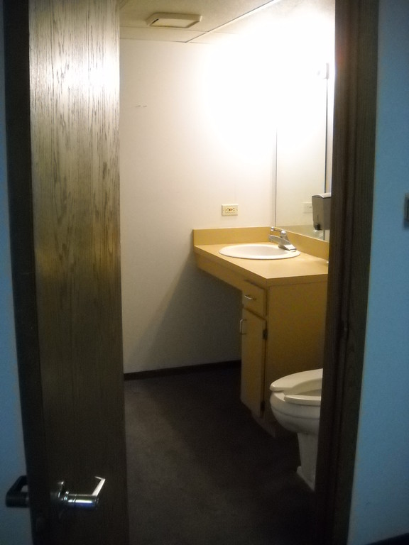 outdated and carpeted bathroom