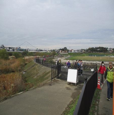 境川遊水池公園付近