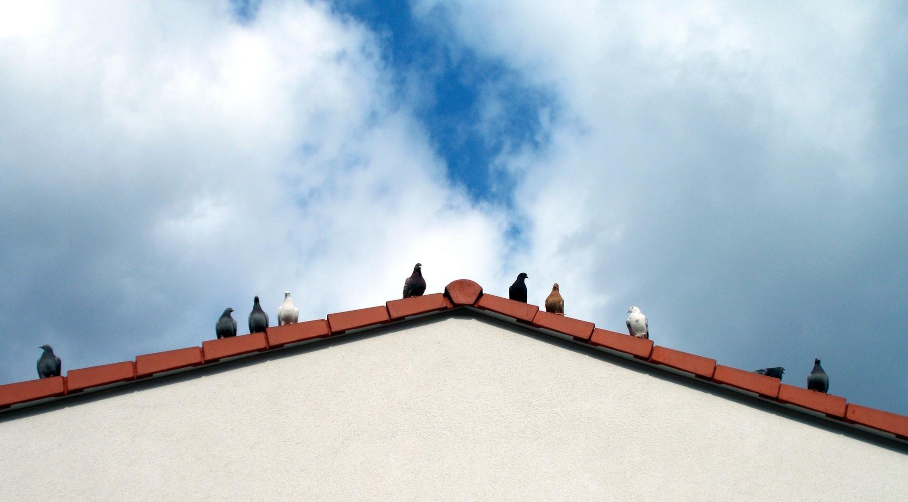 wir haben ein Dach unter den Füßen und über dem Kopf