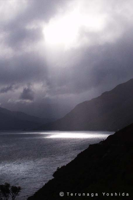 NewZland