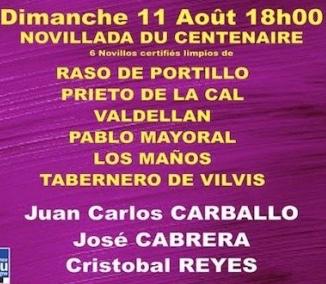 Novillos de Raso de Portillo (1 et 6), Prieto de la Cal, Valdellan, Pablo Mayoral et Los Maños pour Juan Carlos Carballo, José Cabrera et Cristobal Reyes