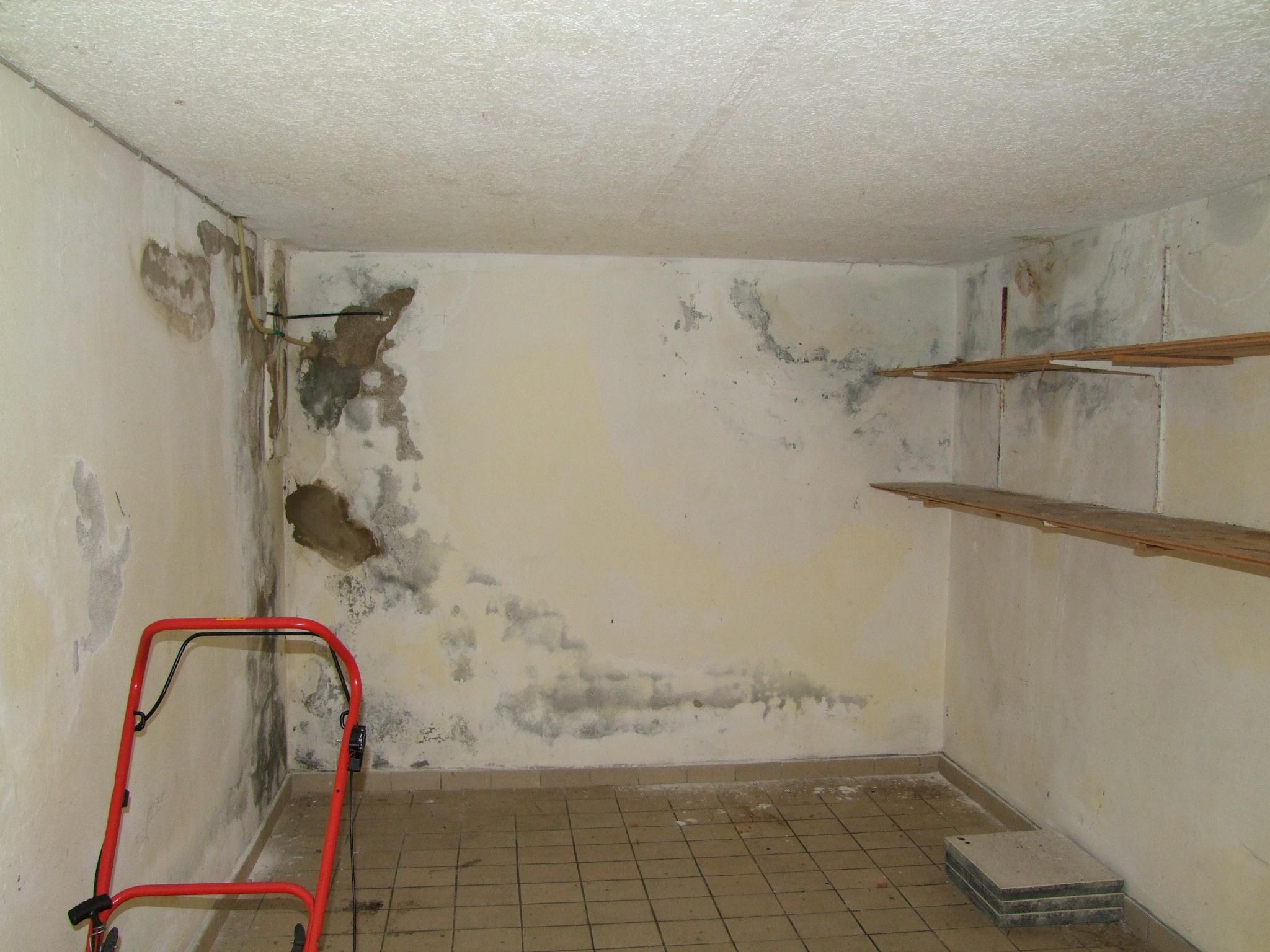 Kompetente Beratung für Feuchteschäden im Kellergeschoss bzw. feuchte Kellerräume (Abdichtungsprobleme)