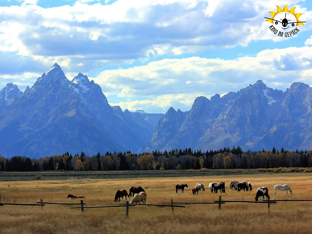 Der Grand Teton Nationalpark südlich des Yellowstone Nationalparks.
