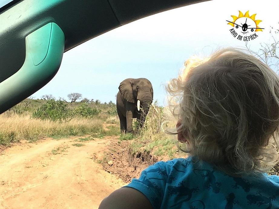 Kleinkind auf Safari im Game Reserve in Südafrika.