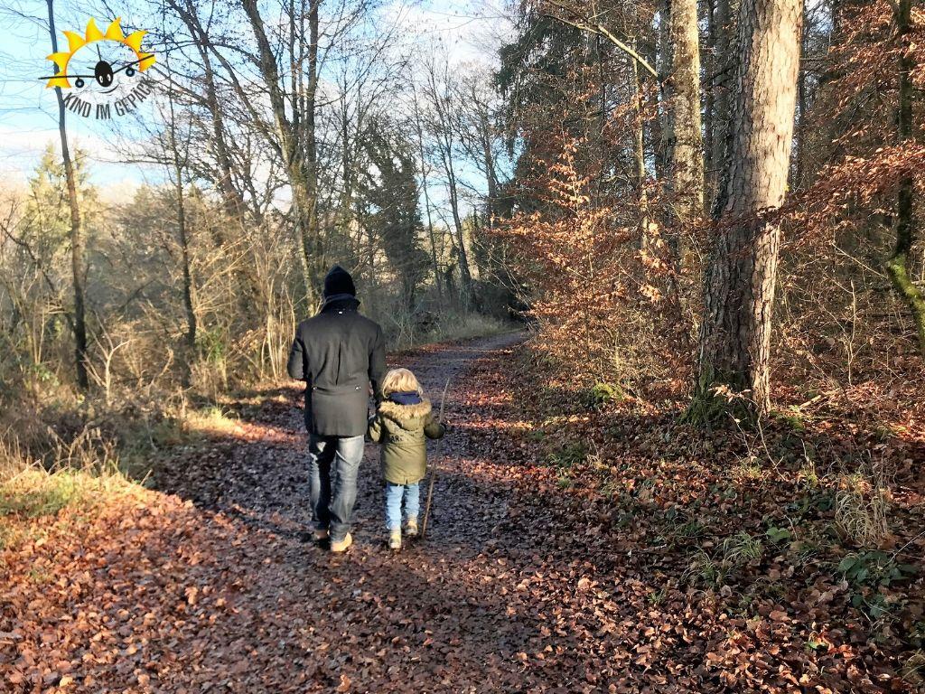 Familienfreundlicher Rundwanderweg im Naturschutzgebiet Mindelsee.