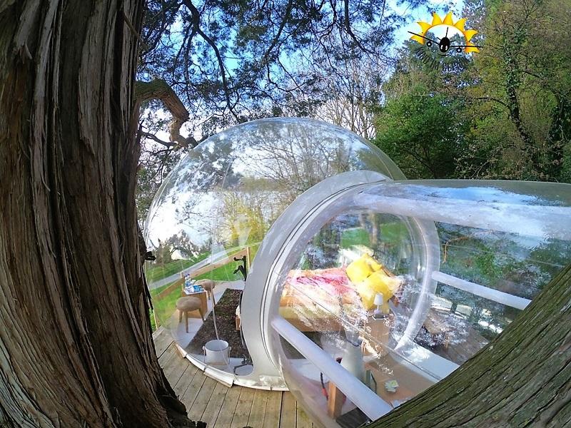 So könnte ein Eichhörnchen die Bubble sehen.