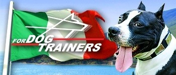 Fordogtrainers & Passion for Dogs