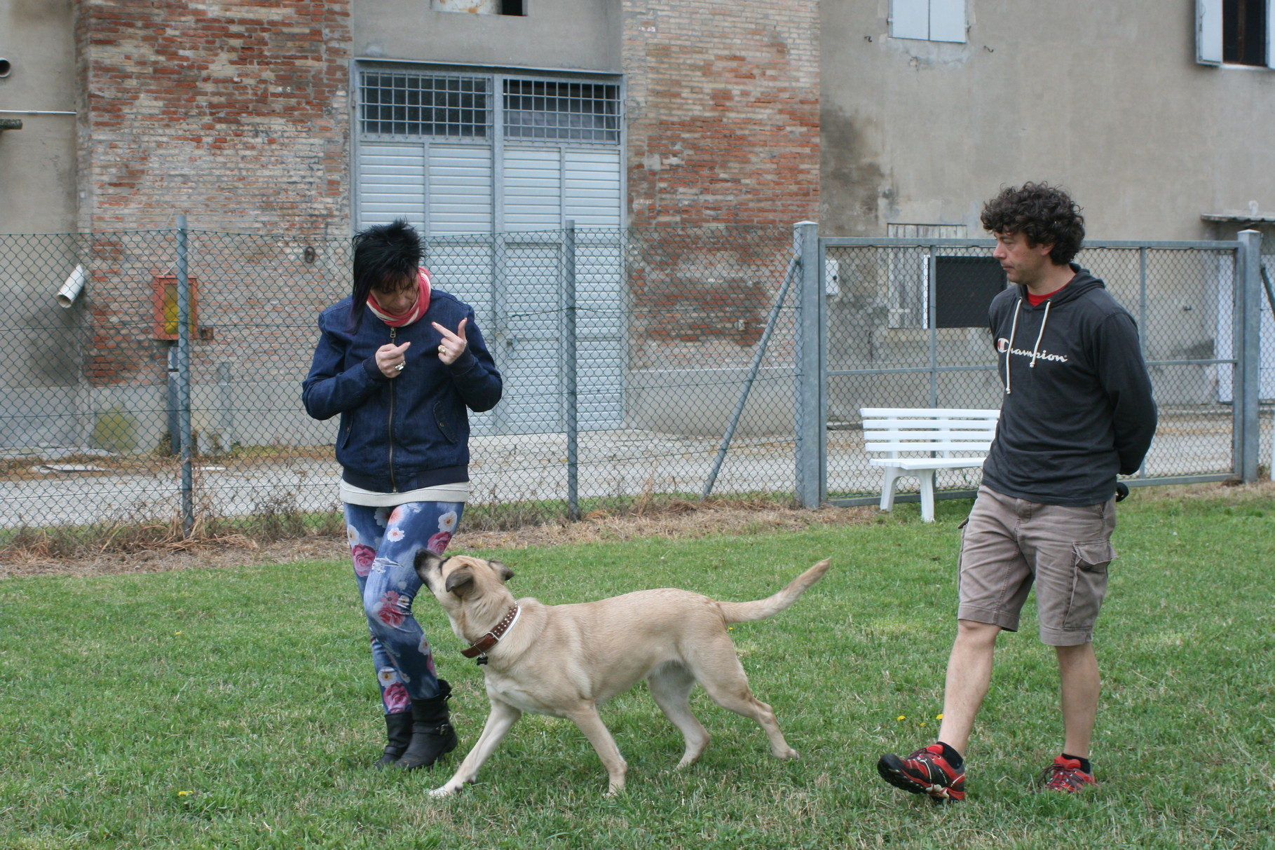 Centro Cinofilo Passion For Dogs - Bologna e Modena