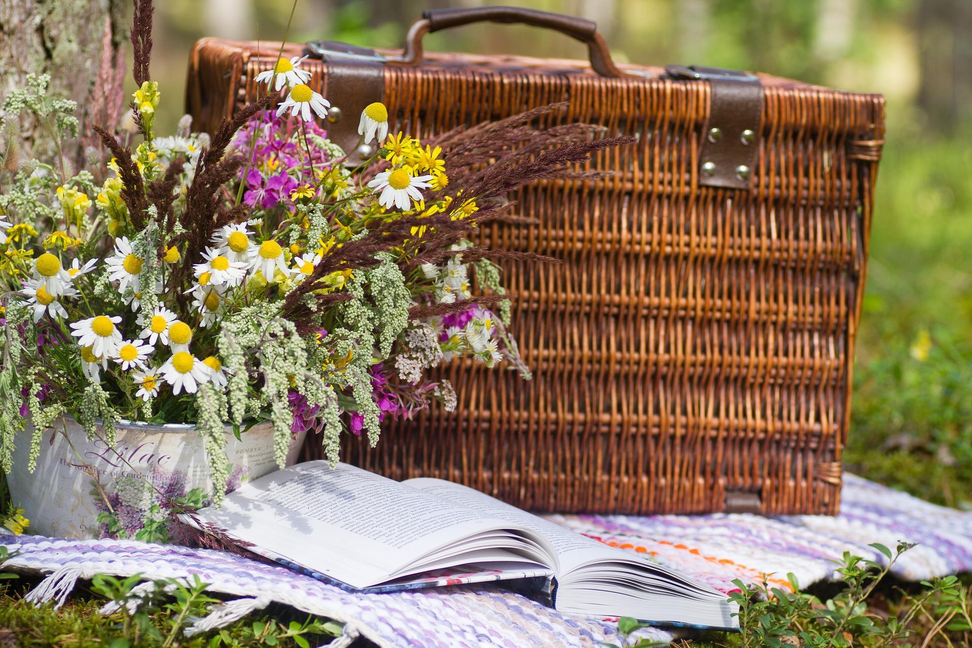 Tipp 17: So, 15.9., 15 Uhr: Picknick mit der Künstlerin Carola Rümper im Rahmen der Berlin Art Week. Boulevard Kastanienallee | © Kristine Lejniece, Pixabay