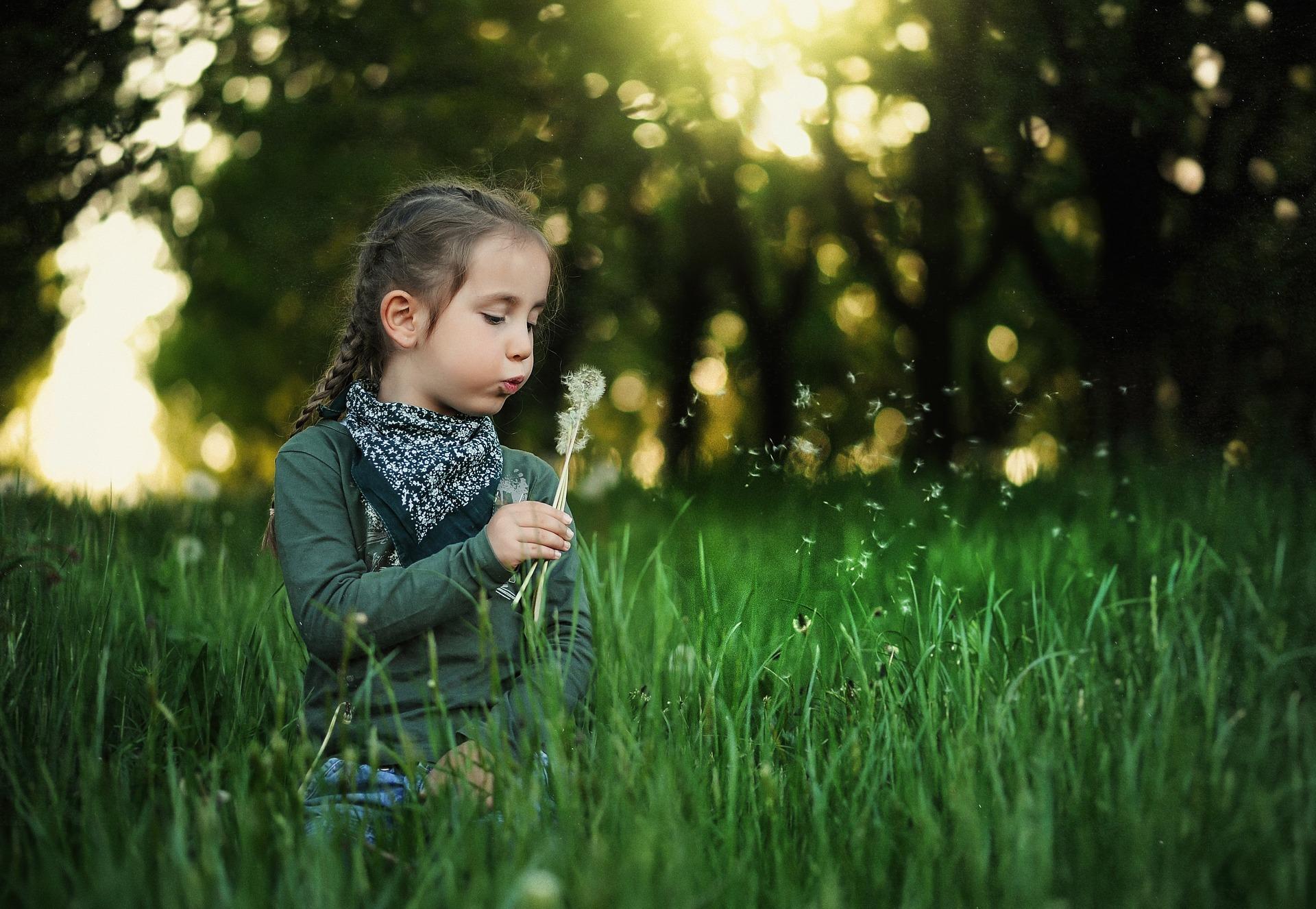 Tipp 12: Die baumschlau-Sonntagsforscher sind da | So, 8. September, 12 bis 17 Uhr | Umweltbildungszentrum Kienbergpark | © Pixabay