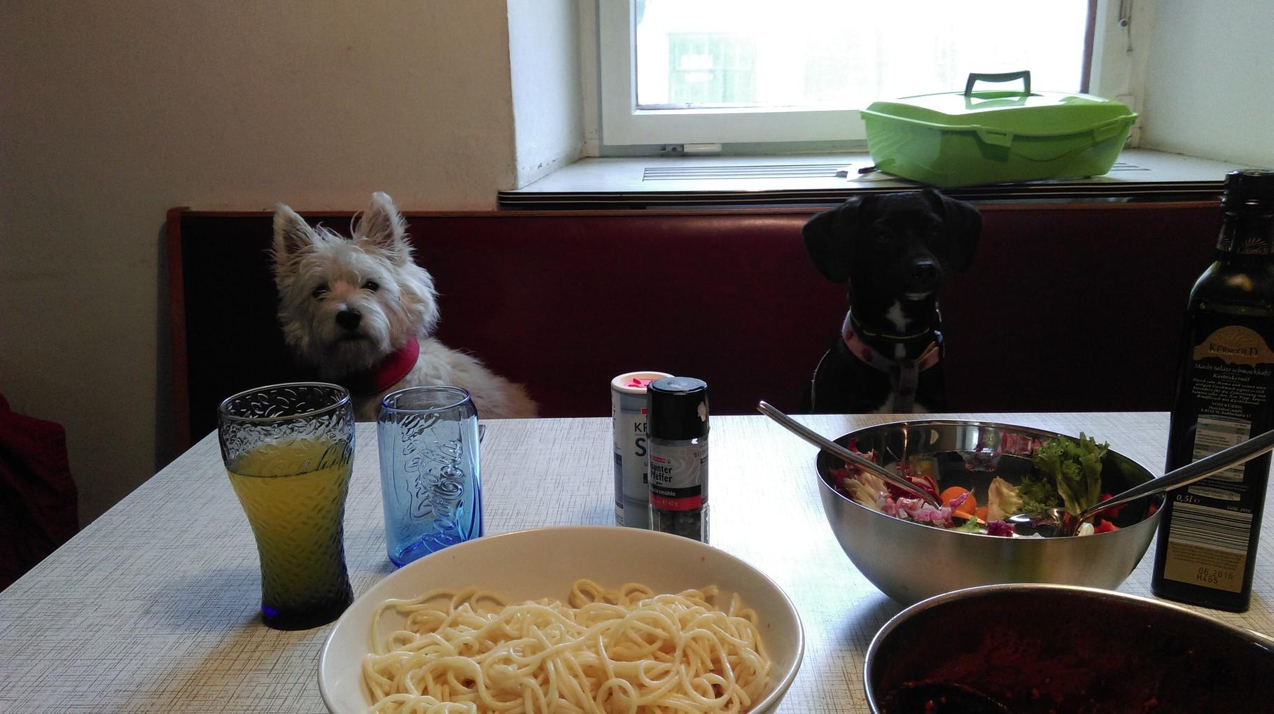 Wir passen eh aufs Essen auf :-))))