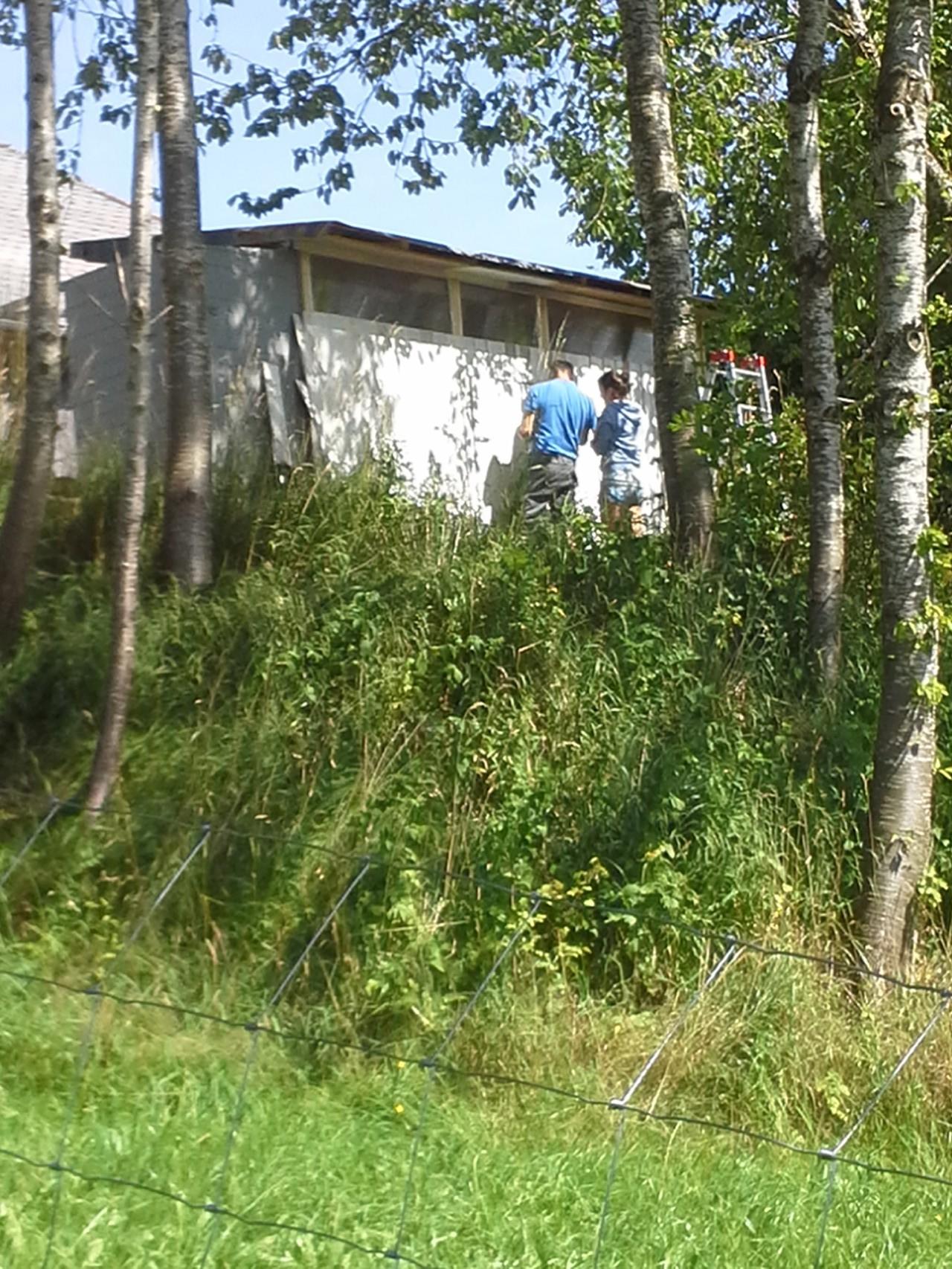 """Ansicht zur Hütte....Wiesen, Sträucher, ein kleines """"Wäldchen"""""""